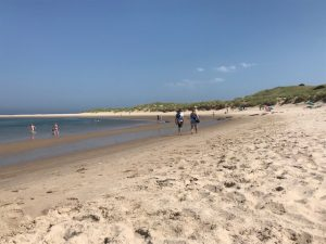 July day at Budle Bay